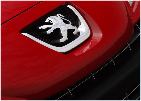 La couleur de l'emblème de Peugeot