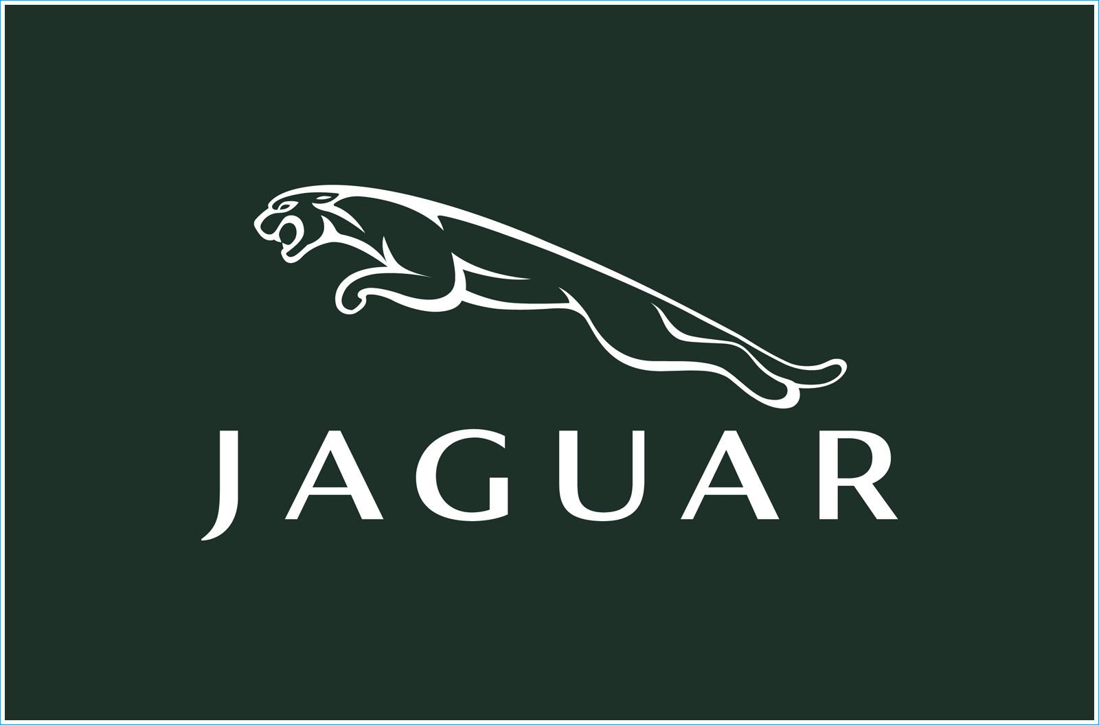 Le Logo Jaguar Les Marques De Voitures