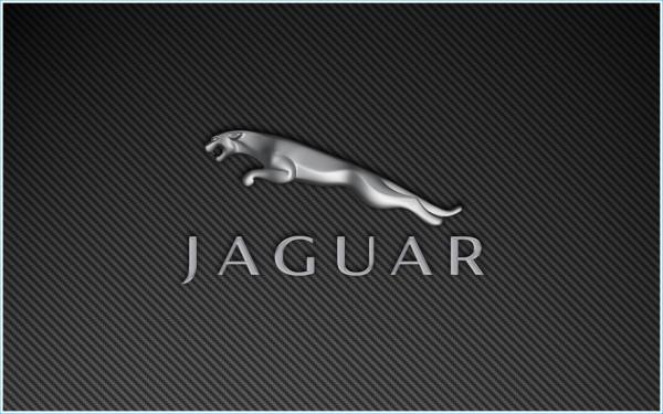 L`emblème Jaguar