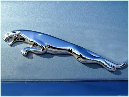 logo voiture jaguar