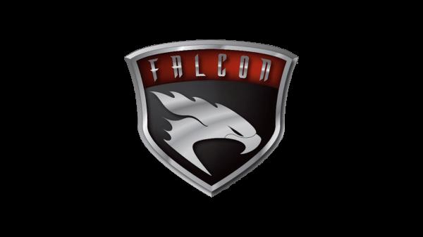 Falcon Motorsports logo