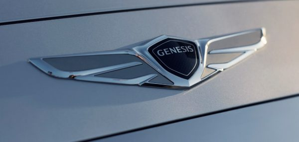 symbole-genesis