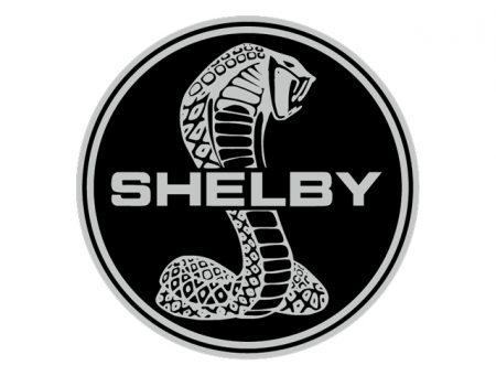 sigle-shelby